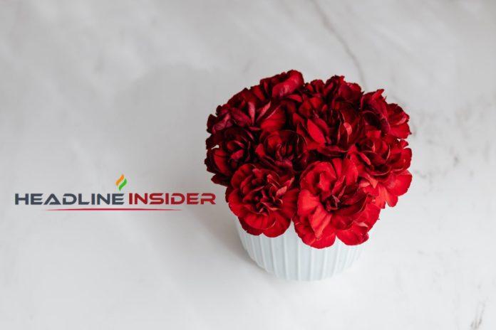 Headline Insider - valentine's day